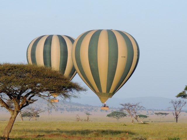 Två luftballonger flyger nära marken i Serengeti
